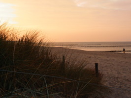 Strand, Zingst, Ostsee